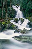 Mouse Creek Falls<br />   and Big Creek<br /> Great Smoky Mountains National Park<br /> North Carolina