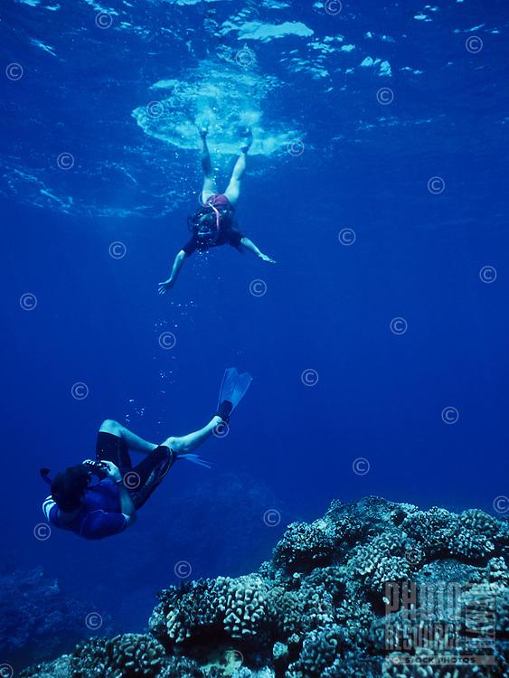 Snorkeling at Kealakekua Bay