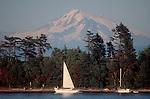 San Juan Islands, Clark Island, Mount Baker in the distance, Puget Sound, Washington State Marine Park, camping, anchored sailboats, summer,.