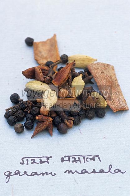 Asie/Inde/Maharashtra/Bombay : Les épices dans la cuisine indienne - Mélange d'épices à moudre