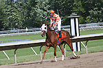 4 JUL 2009:  Precious Passion and Elvis Trujillo win the Grade 1 United Nation Stakes in track record time of 2:10.97 for the 1 3/8 mile.