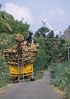 INDIA Tamil Nadu Cape Comorin, loading of coconut shell in front of wind turbines / INDIEN Verladung von Kokosnussschalen vor einem Windpark