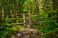 Trail and fence in Lough Avalla Farm Loop trail. The Burren, County Clare, Ireland