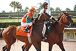Candy Coded Kisses with jockey Cecilio Penalba on post parade for the Desert Vixen Division of the Florida Stallion Stakes of 2012 at Calder Race Course, Miami Gardens Florida. 07-28-2012. Arron Haggart/Eclipse Sportswire.
