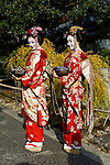 Japan, West Honshu, Kansai, Kyoto: Japanese Geishas | Japan, West-Honshu, Kansai, Kyoto: japanische Geishas in bunten Kimonos