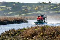2015-01-20_URBAN WILDLIFE_Don Edwards NWR Airboat Ridgway Rail survey