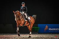AUS-Rozzie Ryan rides Adonnis in the Australia VS NZ pas de deux. The EQUITANA All Star Showcase. 2017 NZL-Equitana Auckland. ASB Showgrounds. Thursday 23 November. Copyright Photo: Libby Law Photography
