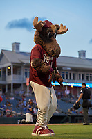 Frisco RoughRiders mascot Bull Moose during a Texas League game against the Springfield Cardinals on May 7, 2019 at Dr Pepper Ballpark in Frisco, Texas.  (Mike Augustin/Four Seam Images)