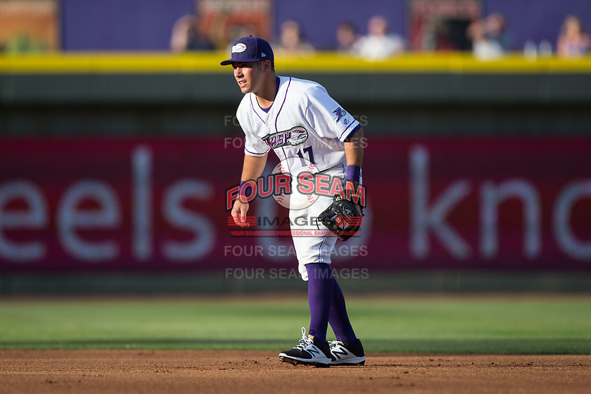 Winston-Salem Dash second baseman Danny Mendick (17) on defense against the Buies Creek Astros at BB&T Ballpark on April 15, 2017 in Winston-Salem, North Carolina.  The Astros defeated the Dash 13-6.  (Brian Westerholt/Four Seam Images)