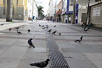 Campinas (SP), 17/03/2021 - Toque de recolher/Covid -  Movimentação na Rua 13 de Maio, nessa quarta-feira (17). <br /> O toque de recolher anunciado ontem (16) pela Prefeitura de Campinas (SP) pretende restringir ainda mais a quarentena de covid-19 na cidade, após o colapso da rede de saúde. A intenção na prática é retirar a população da rua a partir das 20h até as 5h, com abordagens policiais e fechamento de supermercados - que até então podiam funcionar sem restrição de horário. <br /> A nova medida começa amanhã (18) e vale até o dia 30 de março, seguindo a fase emergencial no estado de São Paulo.