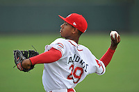 Starting pitcher Jose Almonte (29) of the Greenville Drive warms up before a game against the Charleston RiverDogs on Wednesday, June 1, 2016, at Fluor Field at the West End in Greenville, South Carolina. Charleston won, 7-5. (Tom Priddy/Four Seam Images)