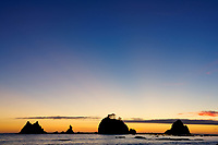 Giants Graveyard sea stack on Washington Coast at sunset, near Strawberry Point, Olympic National Park, Washington, USA