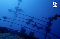 New Caledonia, Noumea lagoon, Belama shipwreck, balustrade on deck, underwater (Licence this image exclusively with Getty: http://www.gettyimages.com/detail/sb10068805ak-001 )