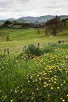 New Zealand.  Scenery along Highway 2 between Opotiki and Gisborne.