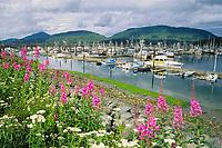 Cordova boat harbor, fireweed, Eastern Prince William Sound, Alaska