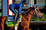 LOUISVILLE, KY - APRIL 30: Vino Rosso, trained by Todd Pletcher, exercises in preparation for the Kentucky Derby at Churchill Downs on April 30, 2018 in Louisville, Kentucky. (Photo by Scott Serio/Eclipse Sportswire/Getty Images)