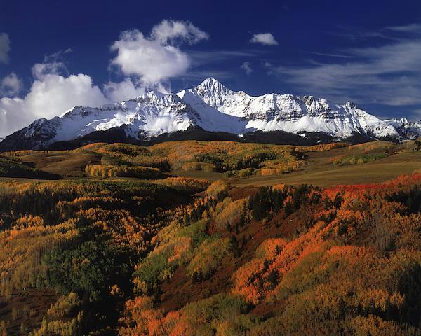 Wolson Peak with autumn aspen trees, Telluride, Colorado, USA.
