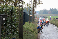 peloton coming down the Holleweg <br /> <br /> 104th Ronde van Vlaanderen 2020 (1.UWT)<br /> 1 day race from Antwerpen to Oudenaarde (BEL/243km) <br /> <br /> ©kramon