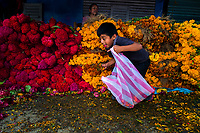 A Mexican boy collects dropped petals of marigold flowers (Flor de muertos) in the market during the Day of the Dead festival in Oaxaca, Mexico, 30 October 2019. Day of the Dead (Día de Muertos), a religious holiday combining the death veneration rituals of Pre-Hispanic cultures with the Catholic practice, is widely celebrated throughout all of Mexico. Based on the belief that the souls of the departed may come back to this world on that day, people gather together while either praying or joyfully eating, drinking, and playing music, to remember friends or family members who have died and to support their souls on the spiritual journey.