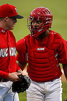 July 3, 2009:  Catcher Luis De La Cruz of the Batavia Muckdogs during a game at Dwyer Stadium in Batavia, NY.  The Muckdogs are the NY-Penn League Short-Season Class-A affiliate of the St. Louis Cardinals.  Photo By Mike Janes/Four Seam Images