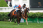 23 May 2009 : Calvin Borel and BRASS HAT (orange) just up in time passes the favorite Spice Route to win the G3 Louisville Handicap at Churchill Downs in Louisville, Kentucky.