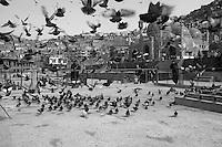 Afghanistan black & white