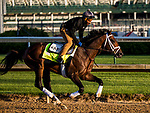LOUISVILLE, KY - MAY 01: Magnum Moon with Nick Bush up gallops in preparation for the Kentucky Derby at Churchill Downs on May 1, 2018 in Louisville, Kentucky. (Photo by Alex Evers/Eclipse Sportswire/Getty Images)