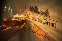 France, Calvados (14), Pays d' Auge,  Le Breuil-en-Auge, Château du Breuil,  les  chais à Calvados  du château.; dégustation // France, Calvados, Pays d' Auge,  Le Breuil en Auge, Château du Breuil, Caivados cellar of  the castle - Tasting