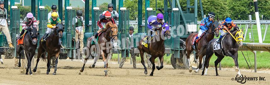 Joe Specs winning at Delaware Park on 6/6/19