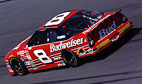 The yellow patches on the rear bumper of 2-time NASCAR Busch Series champion Dale Earnhardt Jr. signifies that he is a rookie on the Winston Cup tour for 2000.  He's shown here practicing for the Daytona 500 at Daytona Internationale Speedway 2/13/00.(Photo by Brian Cleary)