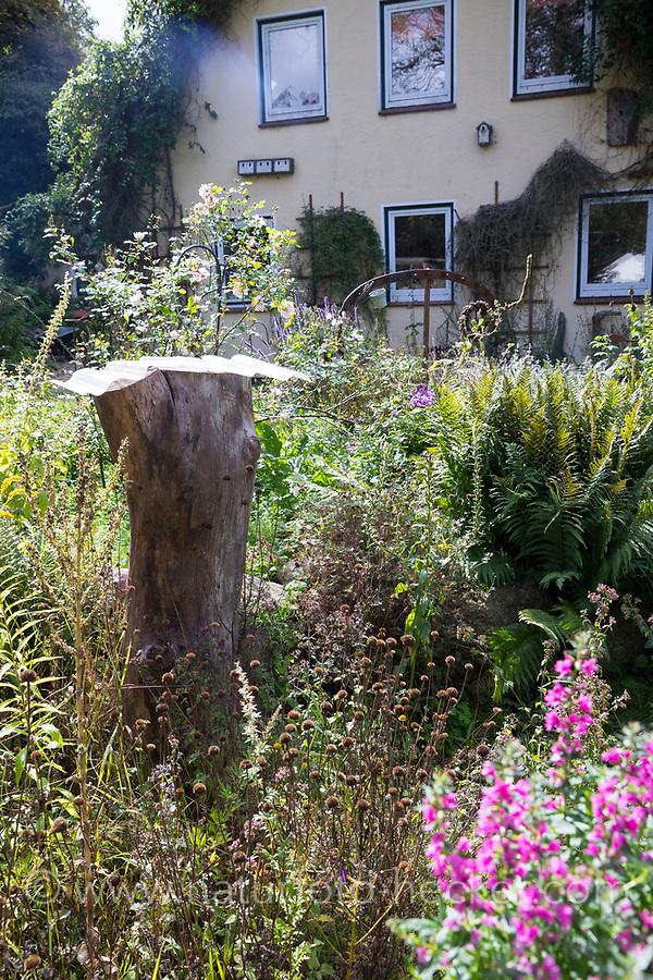 Totholz im Garten, Naturgarten, Baumstamm wird stehen gelassen als Lebensraum für Insekten, Stamm, Baumstubben, ein kleines Dach schützt den Stamm vor Nässe von oben, Regenschutz