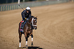 Aunt Pearl, trained by Brad Cox, exercises in preparation for the Breeders' Cup Juvenile Fillies Turf at Keeneland 11.02.20.