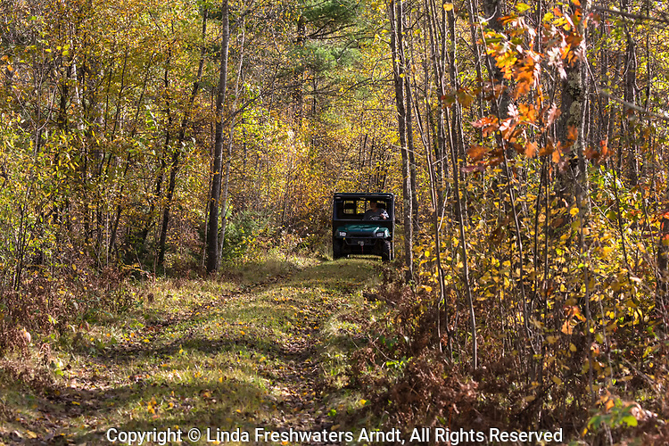 Man driving a Polaris Ranger on a northern Wisconsin trail.