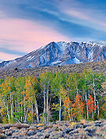 Eastern Sierra Mountains with sunrise anf and fall colored aspens and snow.