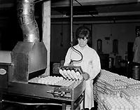 1964 05 ferme et oeufs  PM 4par5