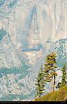 Yosemite Falls Dry Watercourse in Autumn, Taft Point, Yosemite National Park