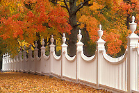 AJ5701, white fence, autumn, fall foliage, Vermont, White fence at the Old First Church along a cluster of beautiful colorful maple trees in the fall in Old Bennington Village in Bennington County in the state of Vermont.