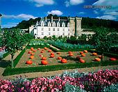 Tom Mackie, FLOWERS, photos, Chateau Villandry & Garden, Loire Valley, France, GBTM200282-2,#F# Garten, jardín