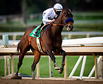 January 02, 2021: Life is Good with Mike Smith wins the Sham Stakes at Santa Anita Park in Arcadia, California on January 2, 2021. Evers/Eclipse Sportswire/CSM