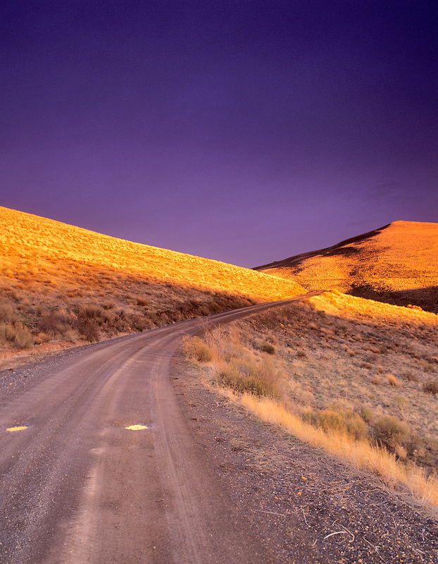 Road in meadow grass. Near Jorden Valley. Oregon.