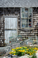 Fishing shack, Menemsha, Chilmark, Martha's Vineyard, Massachusetts, USA