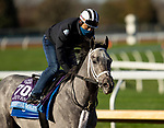 November 2, 2020: Essential Quality, trained by trainer Brad Cox, exercises in preparation for the Breeders' Cup Juvenile at Keeneland Racetrack in Lexington, Kentucky on November 2, 2020. Carolyn Simancik/Eclipse Sportswire/Breeders Cup