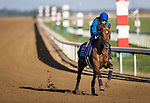Sealiway, trained by Frederic Rossi, exercises in preparation for the Breeders' Cup Juvenile Turf at Keeneland 11.03.20.