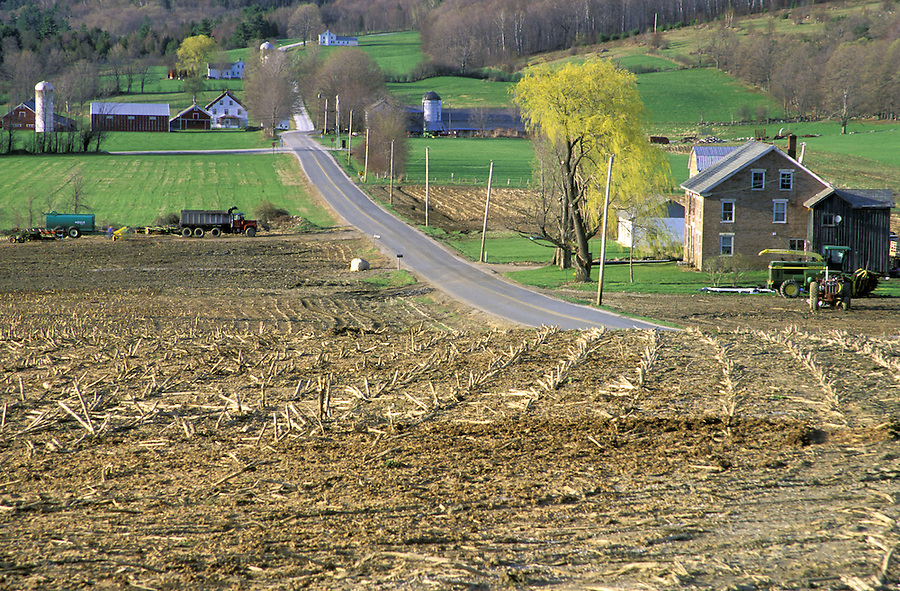 Cut corn field and country road, Tinmouth, Vermont