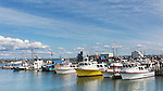Westport Harbor, Washington.  Charter fishing fleet lies at dockside on Washington State's pacific ocean coast.