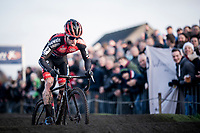 strong racing by Eli Iserbyt (BEL/Pauwels Sauzen-Bingoal) rolling over the pump track <br /> <br /> Azencross Loenhout 2019 (BEL)<br />  <br /> ©kramon