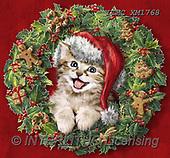 Marcello, CHRISTMAS ANIMALS, WEIHNACHTEN TIERE, NAVIDAD ANIMALES, paintings+++++,ITMCXM1768,#XA# ,Christmas wreath ,cat
