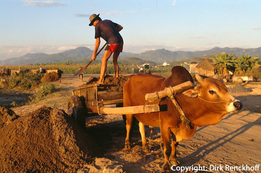 Ochsenwagen in Dien Bien Phu, Vietnam