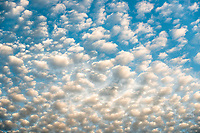 Sunrise on clouds formation, West Coast, South Island, New Zealand, NZ
