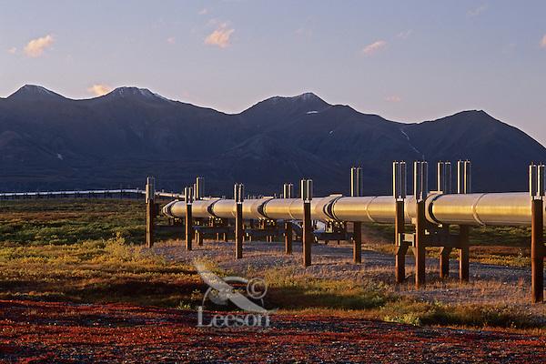 The Trans-Alaskan Oil Pipeline passing through central Alaska.  Fall.